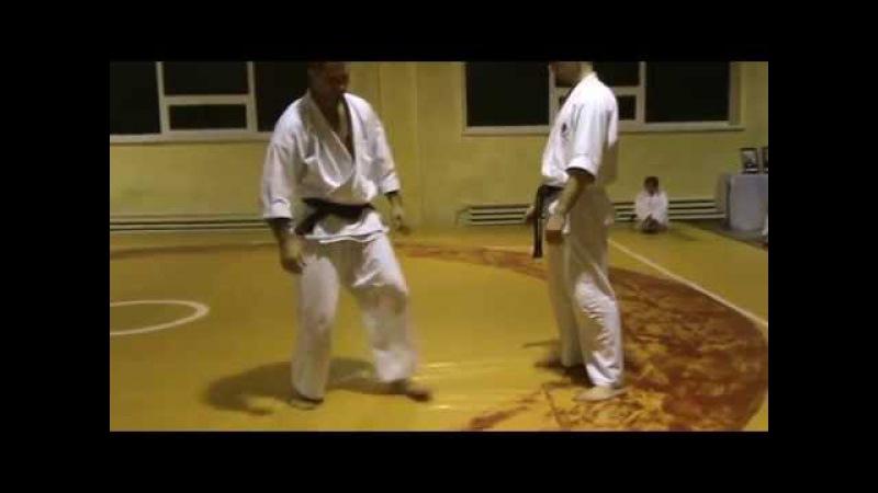 Дзю-Дзюцу (Ju-Jutsu) - Бушинкан - ката підніжок