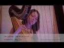 Ellie Goulding - Love Me Like You Do Amy Turk, Harp