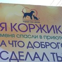 Артём Коржов
