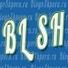 Шпаргалки Блогера — BlogoSHpora.ru
