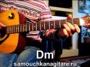 Д. Василевский - Одинокий мужичек за 50 - Тональность Am Как играть на гитаре песню