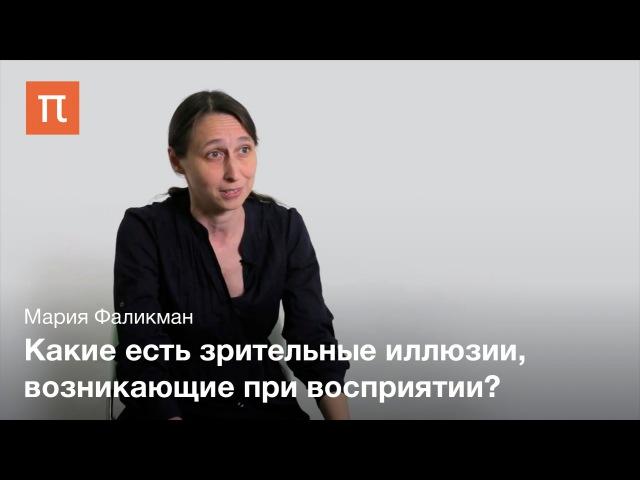 Основные феномены восприятия — Мария Фаликман