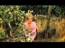 Клип  на песню из кинофильма ЗВЕЗДА ПЛЕНИТЕЛЬНОГО СЧАСТЬЯ