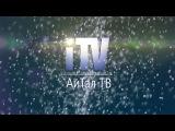 АйТал TV: сезон 3 выпуск 3 (Бал, Новогоднее поздравление)