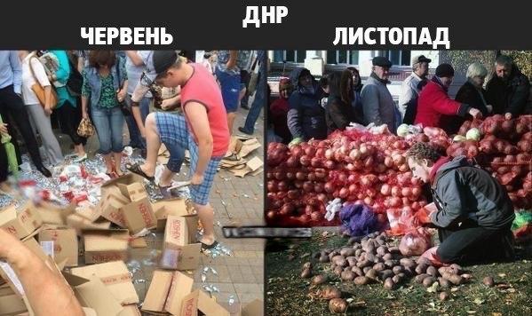 На 59-м округе на Донетчине продолжается противостояние ставленника Ахметова и замкомбата Добровольческого украинского корпуса - Цензор.НЕТ 8427