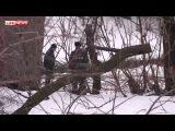 Мать убитой в Ростове 10-летней девочки проверят на детекторе лжи