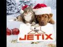 Прямой эфир канала Jetix