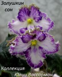 Мельникова Юлия