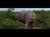 КиноМоменты - Эйс Вентура 2: Когда зовет природа (1995)