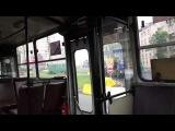 Автобус Санкт-Петербурга 17: Ikarus-280.33О б.7182 по №90(15.06.13)