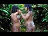 ISOLATED_ Amazon Tribes Xingu Indians Of The Amazon Rainforest