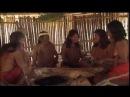 В дебрях Амазонии Часть 2