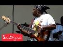 Amazing Live Bass Solo