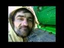 СР пчелы (1 часть) (dm.medvedev73)