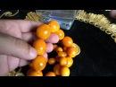 Бусы Янтарь 146 грамм Beads Amber 146 grams 珠琥珀146克