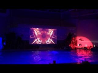 Show in Aqua Planet Jeju