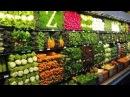 Школа правильного питания1. Видовое питание человека - основа здоровья и долгол ...