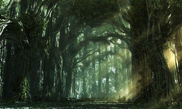 Лес — это храм