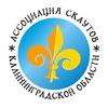 Скауты Калининградской области