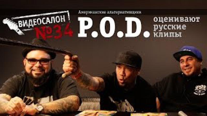 P.O.D. / Payable on Death смотрят русские клипы (Видеосалон №34)