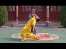 Shaolin kung fu combat 32 catches qin na