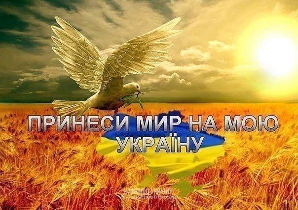 Тука выступает за перенос местных выборов в Донецкой и Луганской областях на 2017 год - Цензор.НЕТ 6228