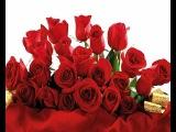 Поздравления с Днем Рождения Прикольные Цветочное Подруге