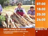 Смотрите на «Мире Белогорья» сегодня, 8 октября