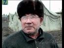 Я Чеченец но Сталина люблю