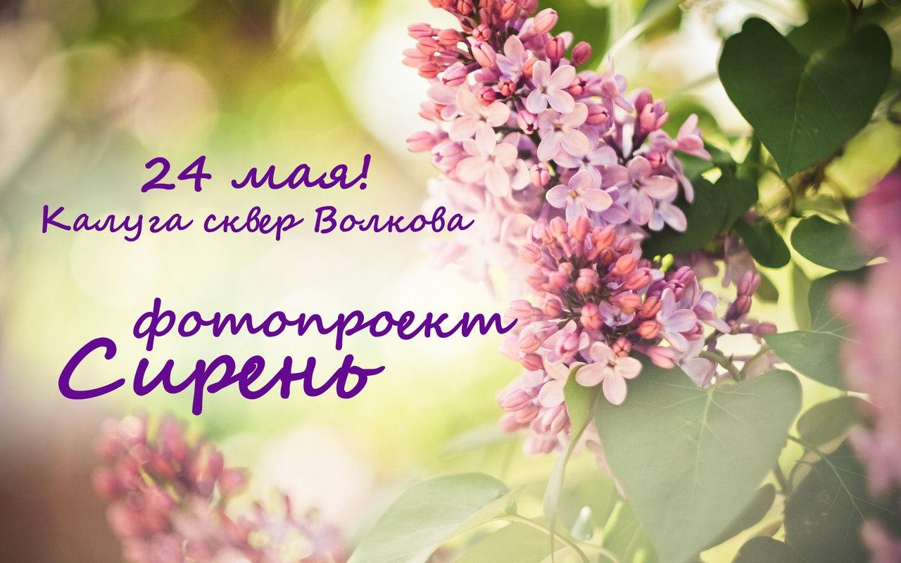 Афиша Калуга фотопроект СИРЕНЬ!