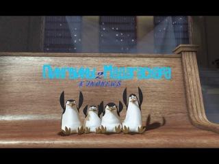 KINONEWS 2 - Пингвины из Мадагаскара