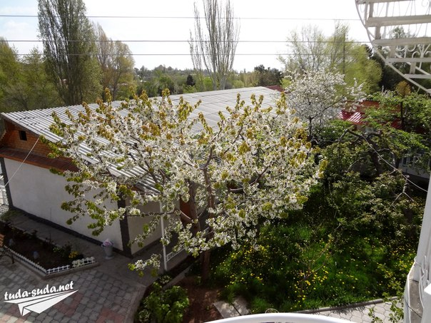 Гостевой дом , Иссык-Куль