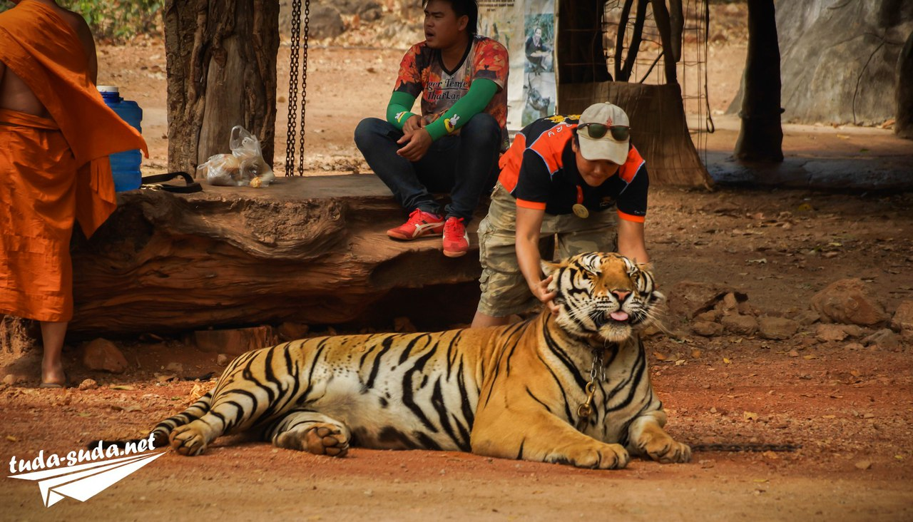 Храм тигра в Канчанабури
