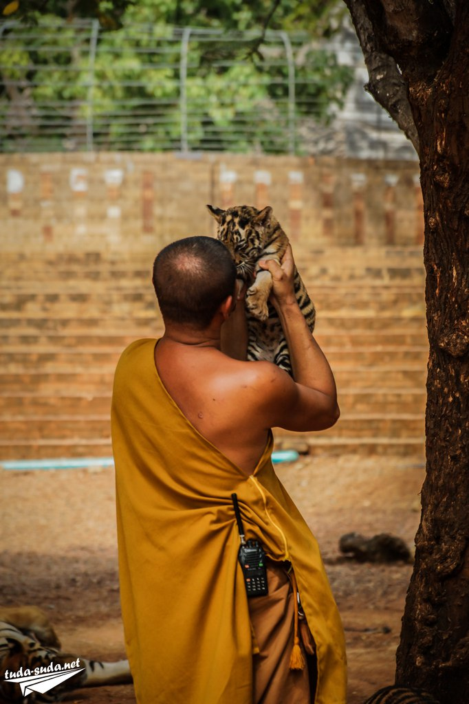 тигриный монастырь Канчанабури