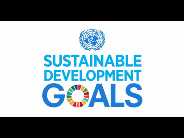 A Look at the Sustainable Development Goals - UN Foundation