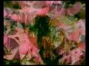 JAY-DEE ● Plastic Dreams