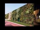 Rozzano (MI)  il giardino verticale più grande del mondo al supermarket Fiordaliso