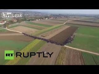 Slovenia Drone captures mass refugee movement near Croatian border/tjasjacha_i_odno_dtp