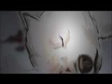 Қазақша мультфильм-2014 Қиянат пен Аманат - YouTube_0_1437023566891