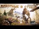 Подкаст «Животные в студии». Выпуск 2. Секс с Роботами, Игромир, Кода, Far Cry Primal и ДРУГОЕ