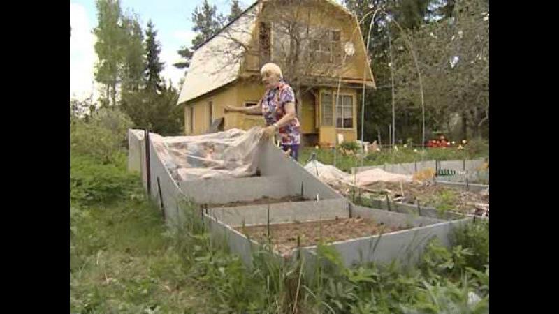 Огород без хлопот Галина Кизима 3
