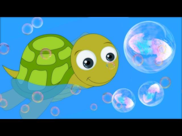 I Had a Little Turtle Preschool Nursery Rhymes for Children by HooplaKidz