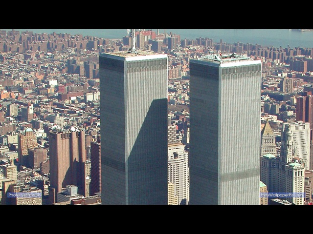 The Window Cleaner of the World Trade Center (2001)