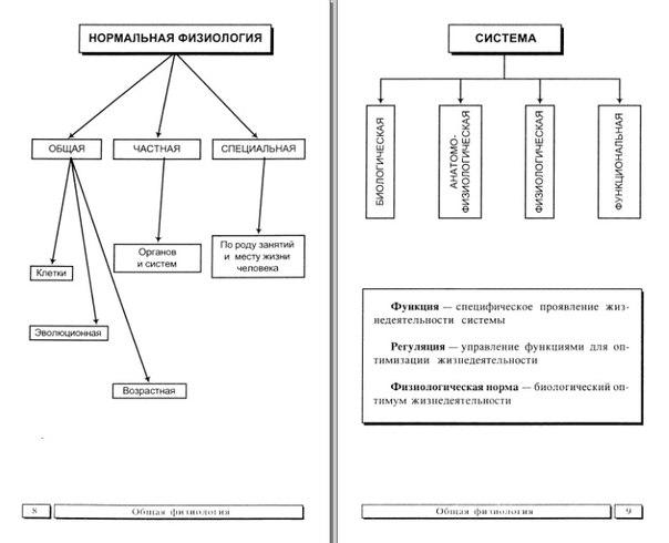 Физиология в схемах и таблицах читать
