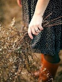 Отцвели цветы, падают листья, птицы молчат, лес пустеет и затихает.ОСЕНЬ. - Страница 6 YUPt6g_5TT4