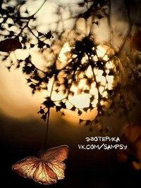 Отцвели цветы, падают листья, птицы молчат, лес пустеет и затихает.ОСЕНЬ. - Страница 6 Z6e4SjLkaGg