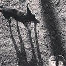 Ксения Отряхина фото #44