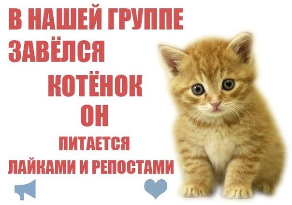 8 нас:
