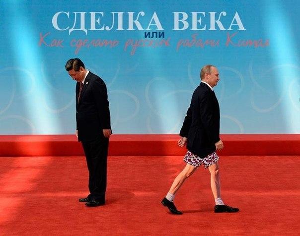 Под Киевом разгружено 40 фур немецкой гуманитарной помощи - Цензор.НЕТ 1221