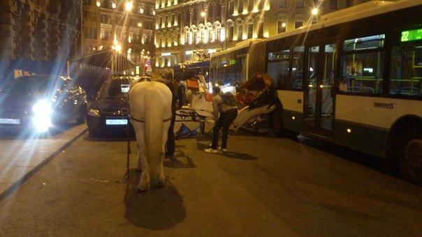 Осторожно, на дороге — лошади!  B8dN8DhqVrc